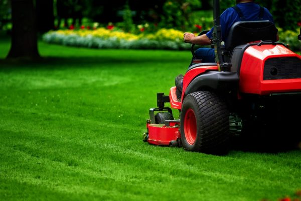 lawn-mowing-cairns